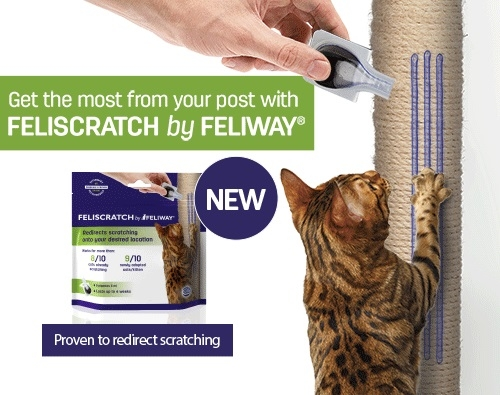 FELISCRATCH by FELIWAY - new innovative pheromone product for inappropriate scratching